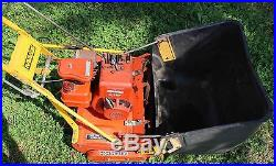 McLane Heay Duty Reel mower with 3 HP Briggs & Stratton engine