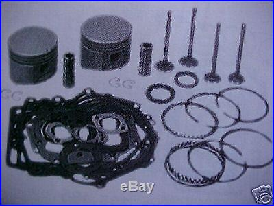 Rebuild kit for BRIGGS&STRATTON TWIN CYLINDER 16hp-18hp